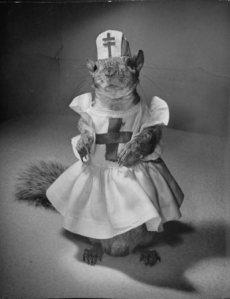 2012_01_09squirrels