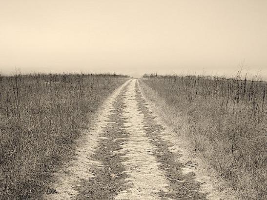 long-road-969019_640-copy